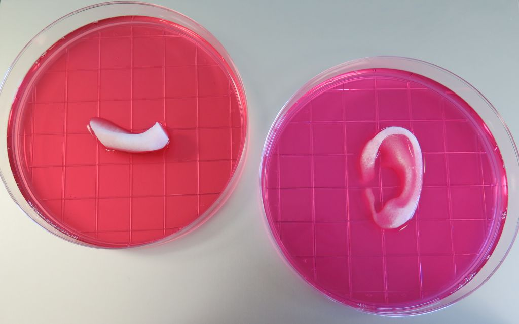 7 miracle that 3D printing can do for medical industry