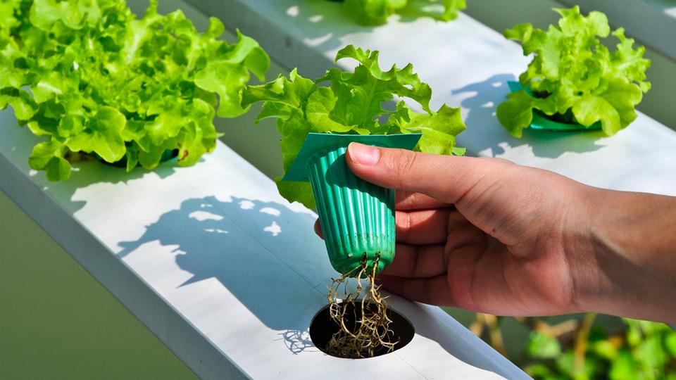 3D printing Meets Environmental Responsibility