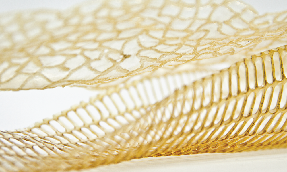 Potential 3D printing materials inspired by nature