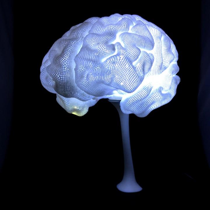 The 3D printed MRI Lamp