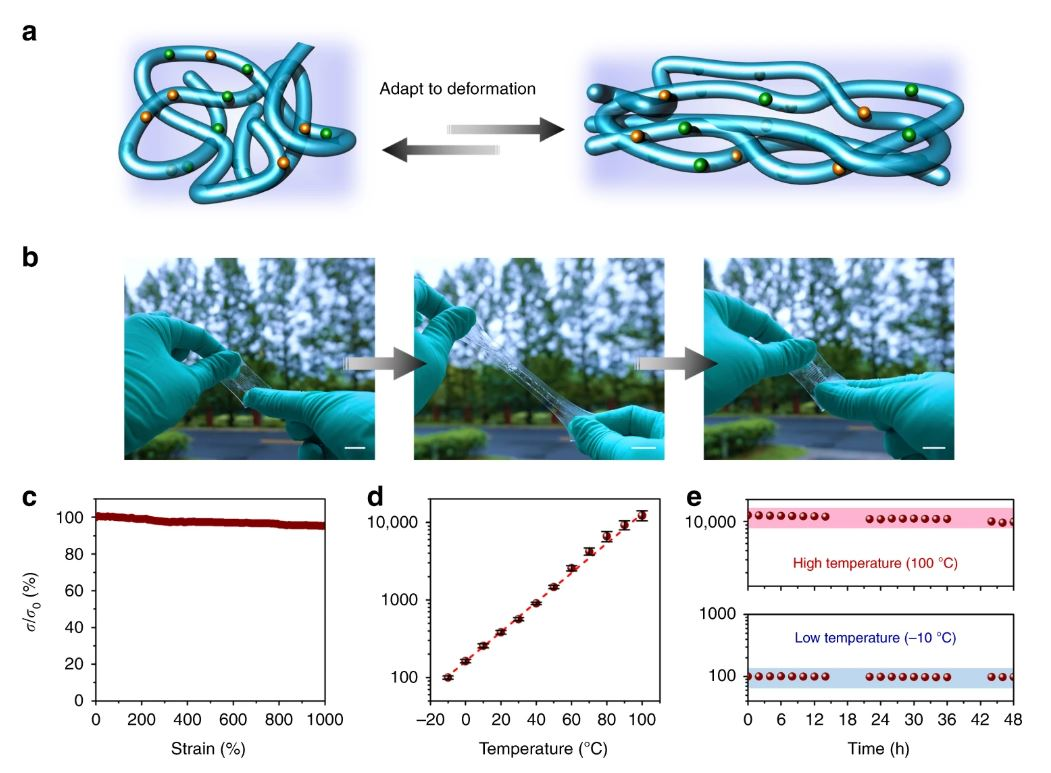 Electrical properties in dynamic environments. a Schematic illustration of the conductive paths in this material adapting to deformation. Blue lines represent ion nanochannels and the purple parts represent the dynamic networks. b Photographs of the 3D-printing conductor during a stretch-release cycle (scale bar: 2cm). c The stability of the ionic conductivity during the deformation process. d The relative changes in ionic conductivity in the temperature range of −10 to 100°C (error bars: standard deviations). e The stability of the ionic conductivity at extremely low or high temperatures for a long period. These measurements are humidity control (60 RH%) https://www.nature.com/articles/s41467-019-11364-w